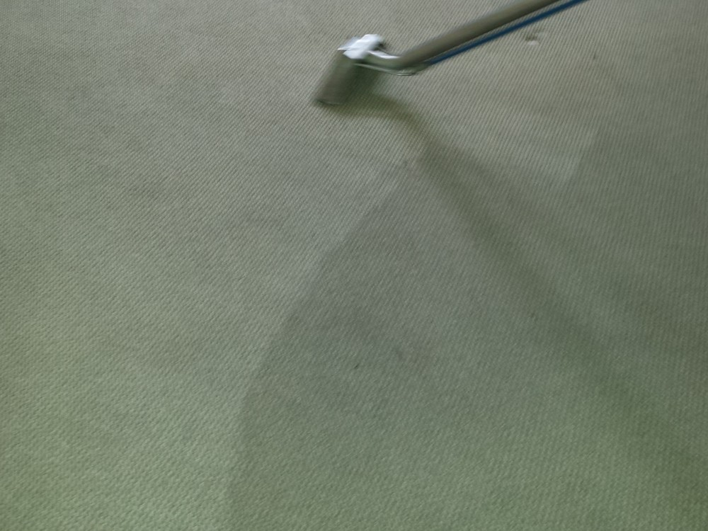 When Should I have my Carpets Cleaned?
