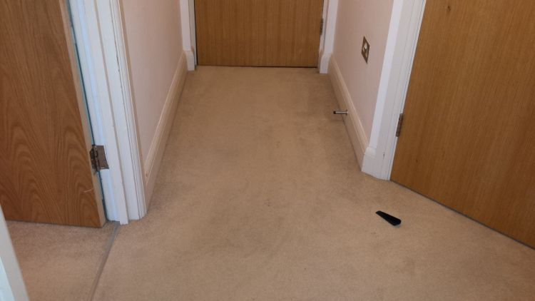 Super Carpet Cleaning And The Things To Consider Before You Have Interior Design Ideas Inamawefileorg