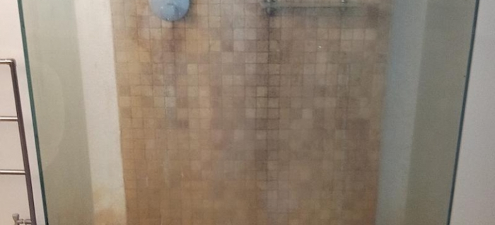 Domestic Steam Cleaning Professional Cleaners - Bathroom steam cleaning service