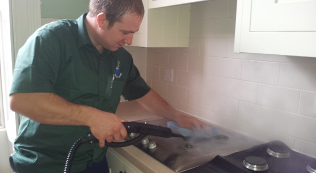 Domestic Steam Cleaning Professional Cleaners